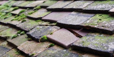 Kempsey roof repair costs